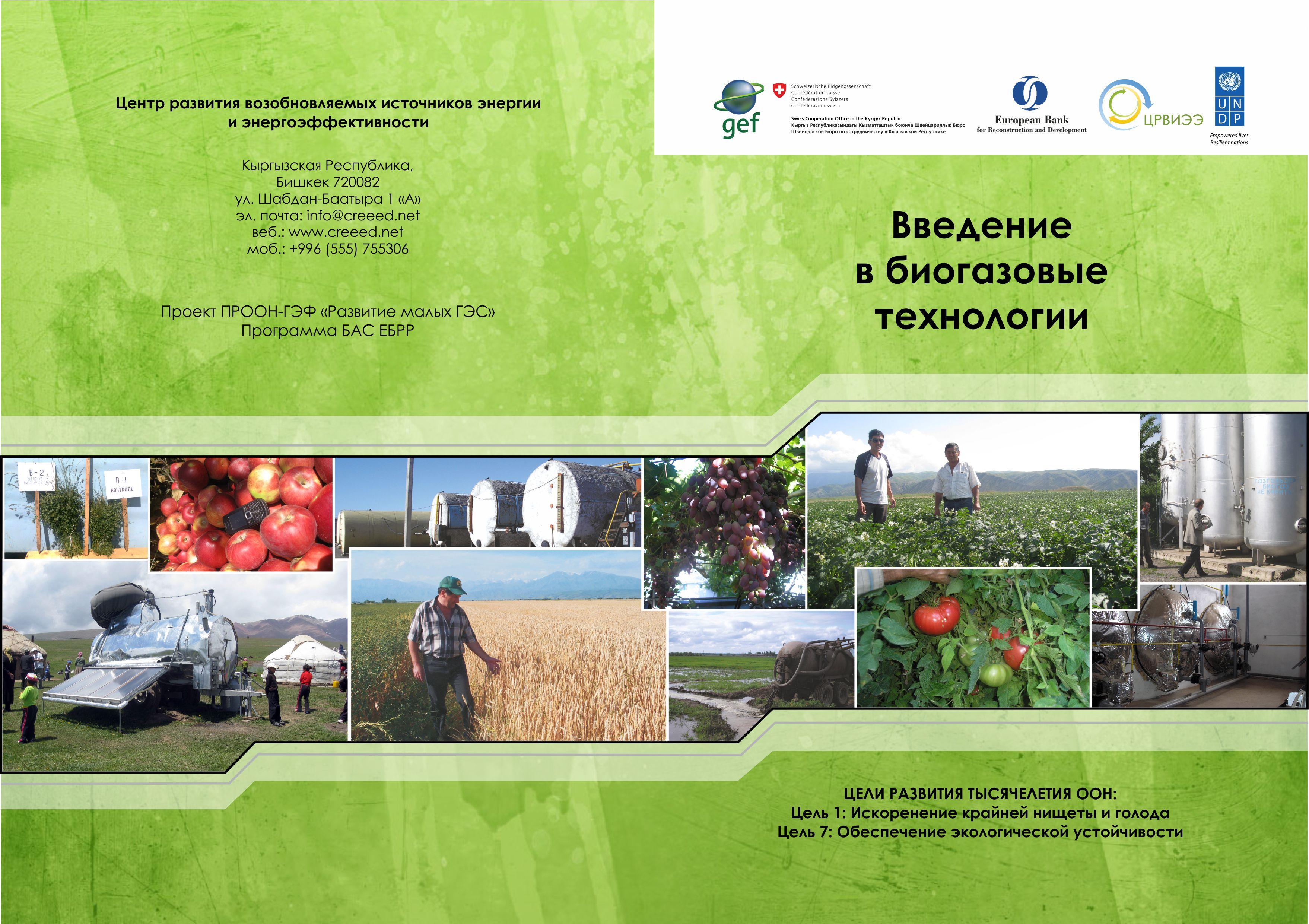 Биогазовые технологии рус